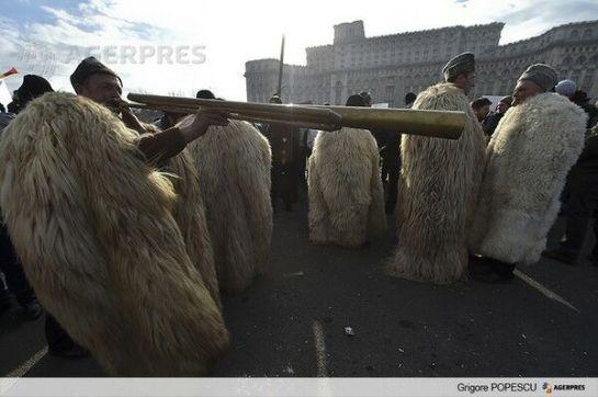 Ismét Bukarestbe készülnek a juhászok
