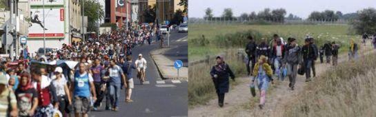 Ha szükséges, lezárják a magyar-román határt