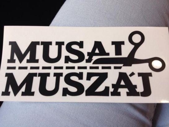 Találkozót kért Kolozsvár polgármesterétől a Musai-Muszáj mozgalom