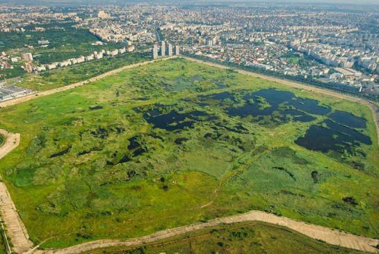 Kitömött barbár, természetvédelmi övezet Bukarestben és méz a mai Észpresszóban