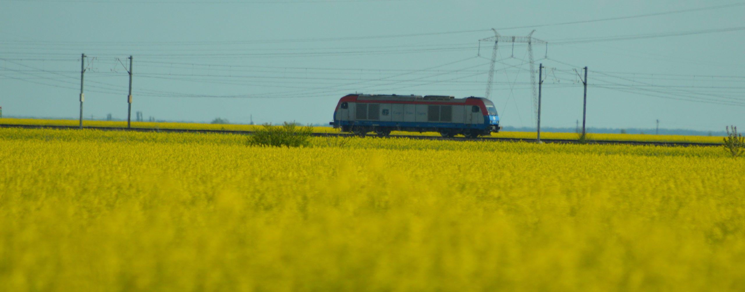Kigördült az első vendégmunkás-vonat Temesvárról