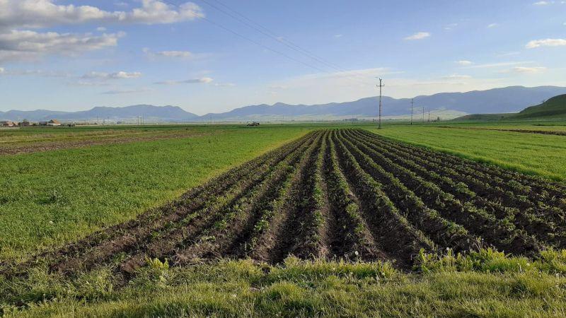A földterületek feldaraboltsága akadályozza a mezőgazdaság versenyképességét