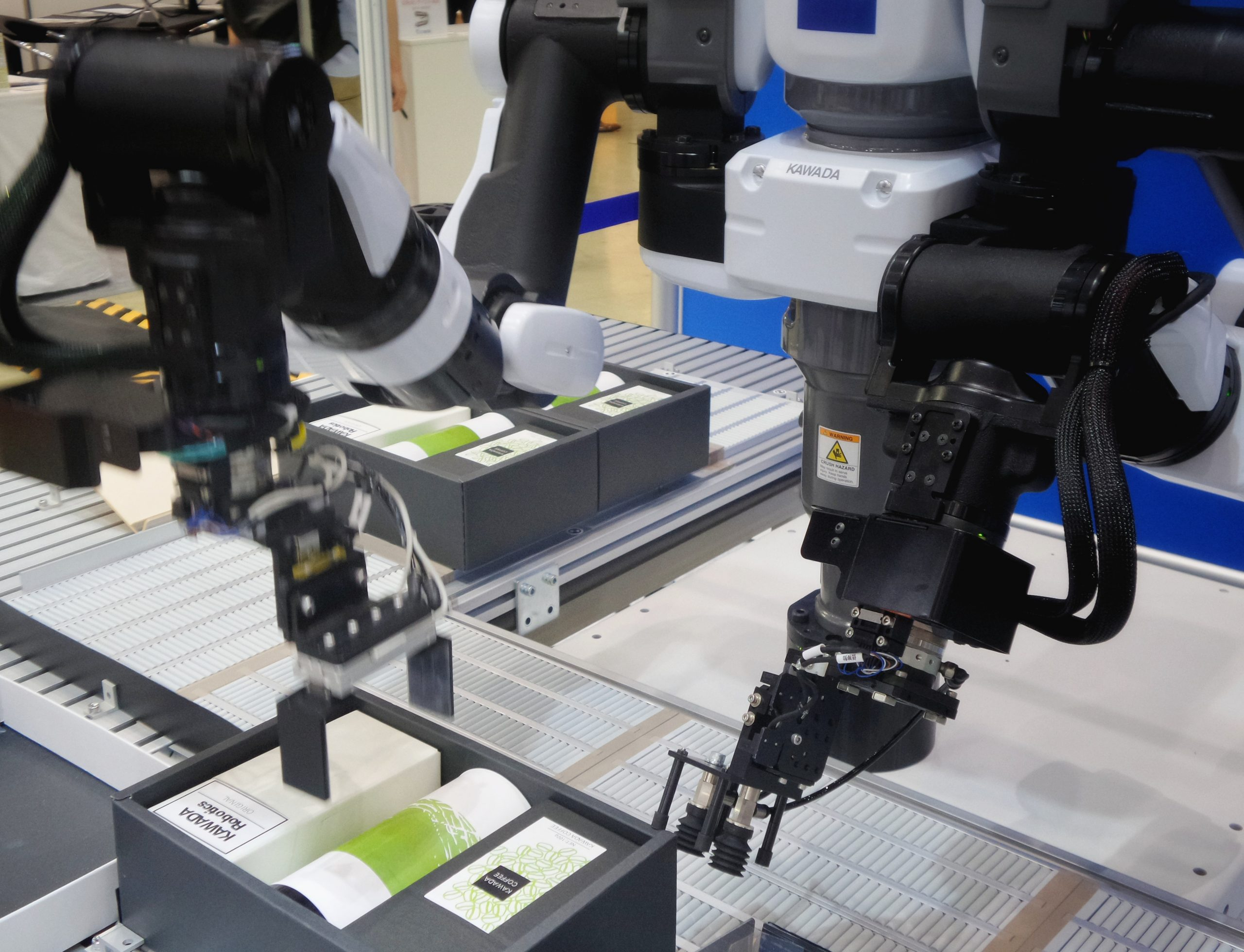 Robotoké a jövő?