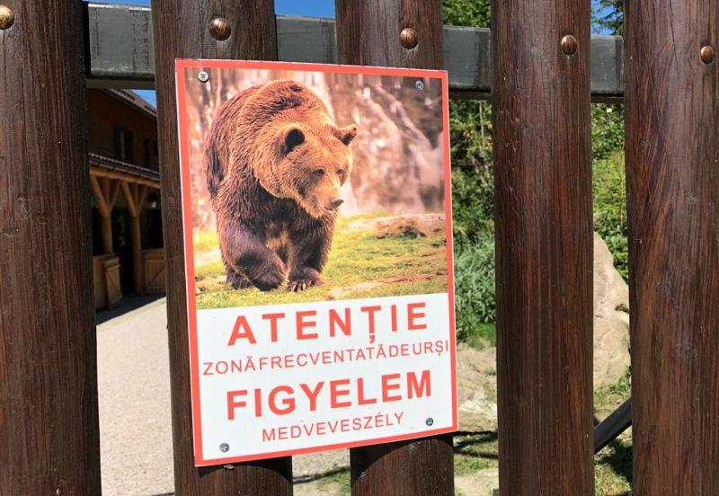Medvehelyzet miatt tüntettek