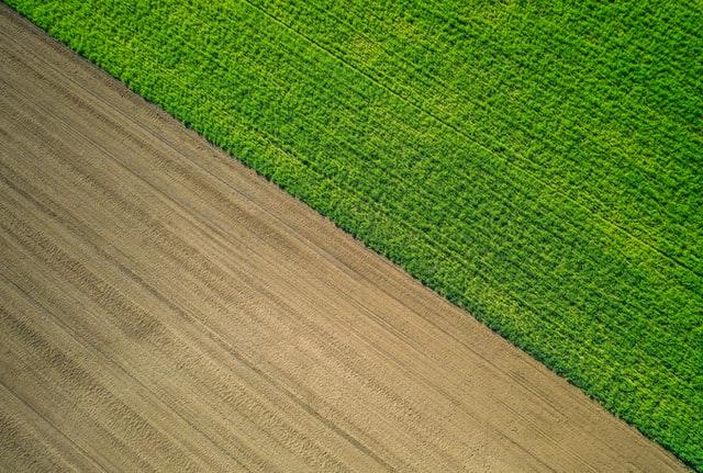 Vegyszermentes mezőgazdaságot szeretnének az EU-ban