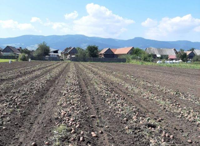 Közeleg az agrártámogatási kérelmek benyújtásának határideje