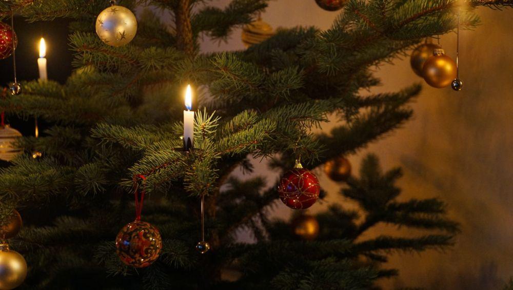 Áldott karácsonyi ünnepeket kívánunk!