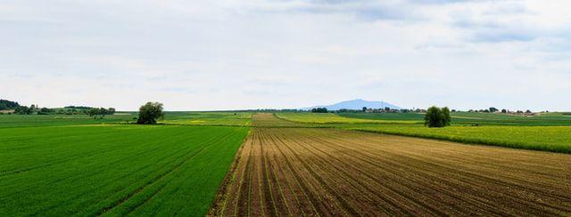 Május 10-én kezdődik és július 31-ig tart az általános mezőgazdasági összeírás Romániában